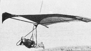 Art based on a photo of the Pliable Moose Diffusion Tip hang glider of 1974