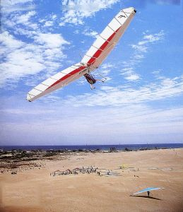 Art based on a photo  by Brad Stevens of Steve Wendt flying a Wills Wing Skyhawk at Nags Head, North Carolina