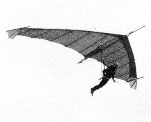 Miles Wings Gryphon mark 2 hang glider