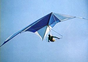 Standard Rogallo hang glider by Adrian Turner