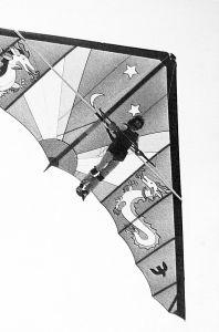 Hang glider sail art