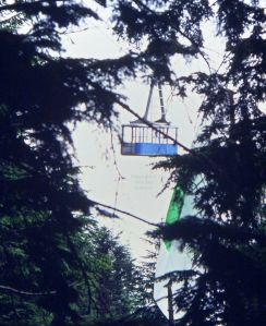 Hang glider wreckage in trees after mid-air collision between John Duffy and Ian Huss at Grouse Mountain in 1984. Photo by Jan Kulhavy.