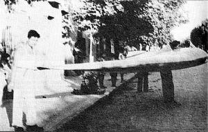 Horten Alita tail-less rigid hang glider
