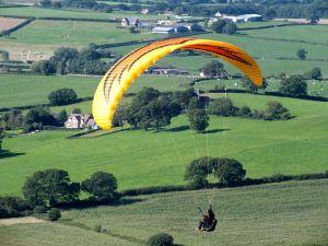 Firebird paraglider flying in 2015