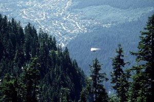 Hang glider flying over forested mountainside and Vancouver suburbs