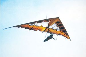 Rogallo wing hang glider of the mid-1970s