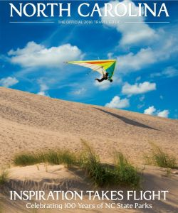 Pacific Airwave Vision Pulse hang glider