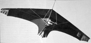 Flexiform Sealander hang glider