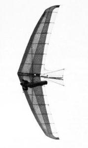 Hiway Alien hang glider