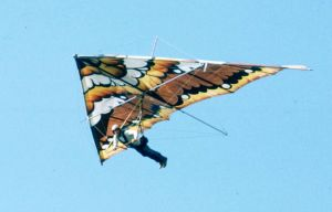 Hang glider with painted sail at Grandfather Mountain in September 1975