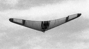Horten Alita in flight