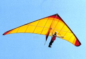 Electra Flyer Spirit with custom inlay