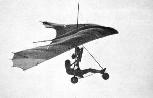 Flex-wing powered ultralight of 1980